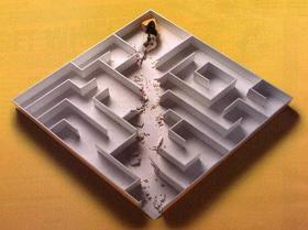 Irrgarten Und Labyrinth Tipps Labyrinth Irrgarten Anlegen Kann